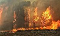تجدد الحرائق في عدة مناطق لبنانية