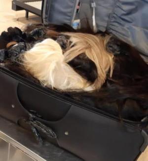 الجمارك تحبط تهريب شعر طبيعي