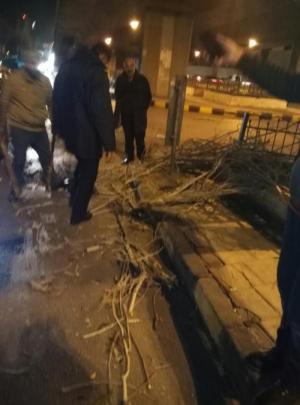رياح المنخفض تقتلع 105 أشجار بكافة مناطق المملكة
