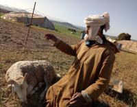 راعي غنم يحل لغز اختفاء طفلة لأكثر من شهر