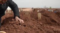 انتحار زوجين فوق قبر ابنهما