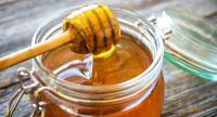 الأردن ينتج 288 طناً من العسل