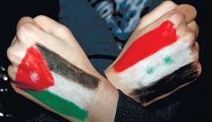 الاردن يجدد تأكيده على حل الازمة السورية سياسياً