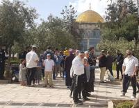 قائد شرطة الاحتلال ومستوطنون يقتحمون الأقصى (صور)
