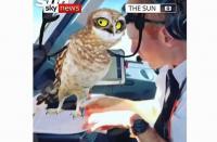 تصرف متهور لطيارين على ارتفاع 38 ألف قدم (فيديو)