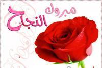 ديمه فراس القطيفان  ..  الف مبروك النجاح