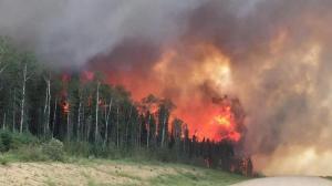 الحرائق التهمت نحو 34 الف دونم من المحاصيل بالاردن