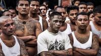 توقف حياة العصابات وتراجع الجرائم