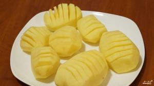 هل البطاطا وحدها تبقينا على قيد الحياة ؟
