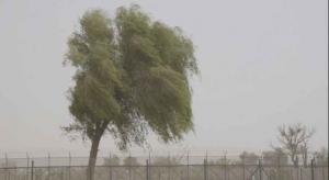 """""""طقس العرب"""": جبهة هوائية شديدة البرودة  ..  السبت"""