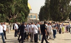 عشرات المستوطنين المتطرفين يقتحمون باحات الأقصى