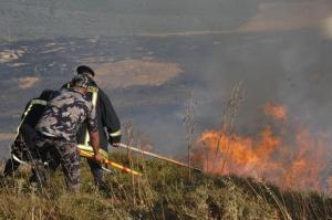 الدفاع المدني يتعامل مع 5984 حالة إسعاف و 342 حريقا (صور)