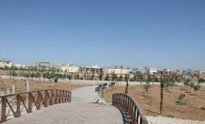 شكاوى من تعاطي مخدرات وكحول على احد ارصفة حدائق الملك عبدالله