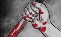 فلسطين: مقتل امرأة حامل على يد زوجها