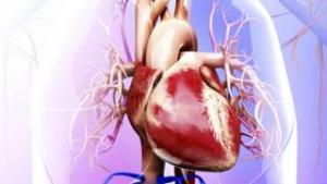 أمراض القلب ما زالت اهم سبب للوفاة
