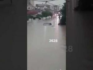 انقاذ 20 شخصا حاصرتهم مياه الأمطار بإربد (فيديو)