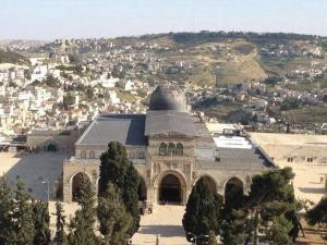 65 مستوطنًا يقتحمون المسجد الأقصى