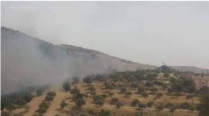 حريق يلتهم 800 دونم من الاعشاب الجافة بالزرقاء