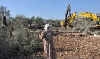 جرافات الاحتلال تدمر محاصيل المزارعين في الاغوار الشمالية