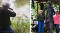 عجوز أميركية تثأر من تمساح (فيديو)