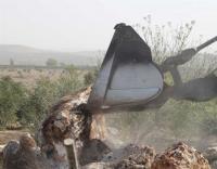الإحتلال يصادر 25 دونما من أراضي جماعين بنابلس