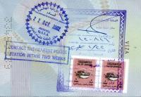 تأشيرات دخول للفئات التالية عبر البعثات الدبلوماسية