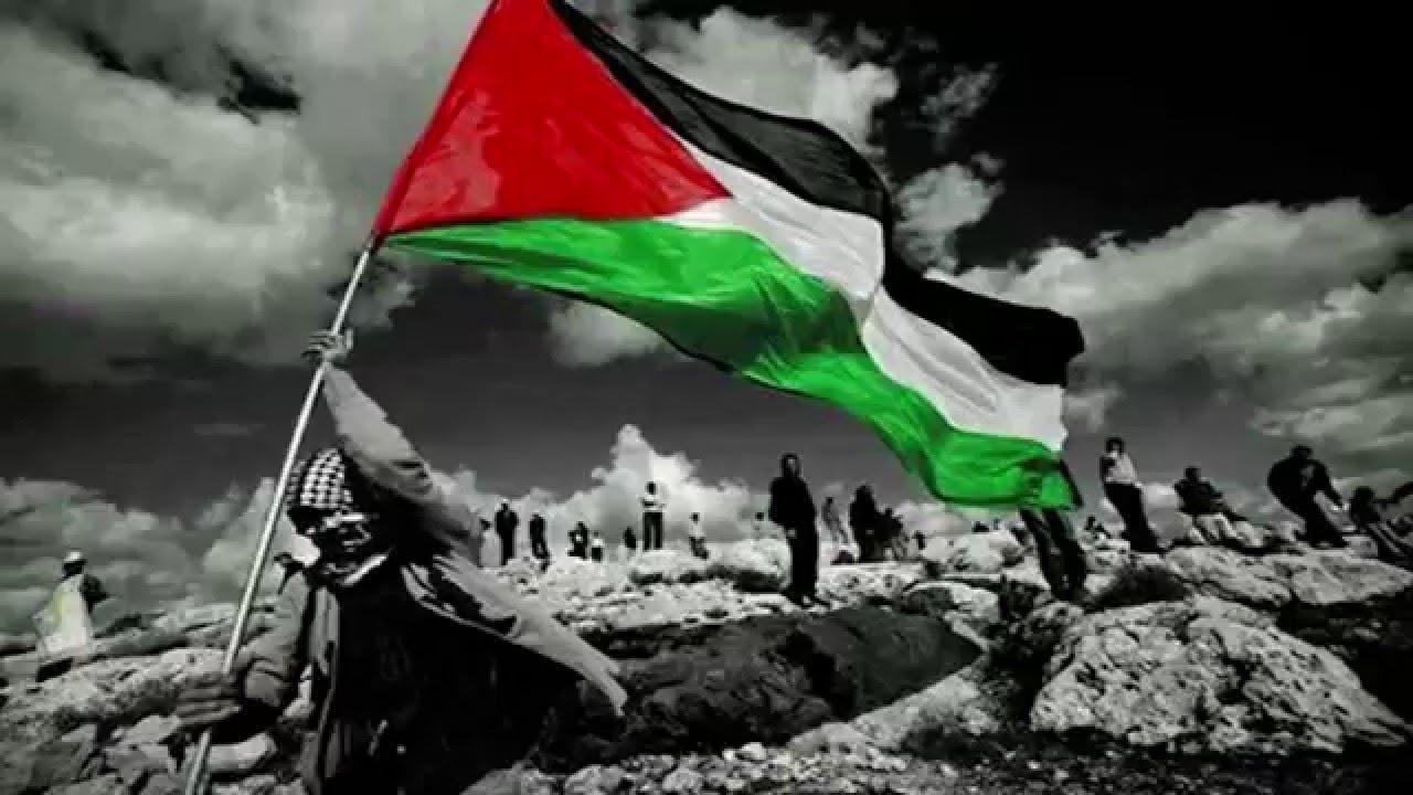 السجن لمن يرفع فلسطين داخل المناطق المحتلة عام 48 Image