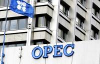 لماذا حافظت أوبك على توقعاتها للطلب على النفط الخام ؟