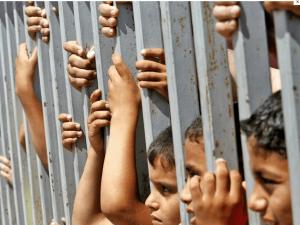 300 طفل فلسطيني يقبعون في سجون الاحتلال