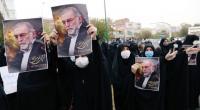 إيران تعترف : فشلنا في إيقاف اغتيال زاده