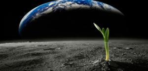 100 مليون دولار للبحث عن كائنات خارج الأرض