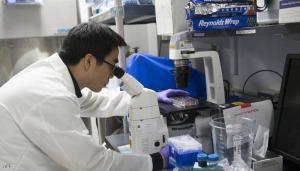 دراسة: لقاح كورونا مفيد لمرضى سرطان الدم