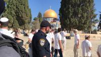 فلسطين النيابية : غطرسة الإحتلال لن توقف الأردن عن دوره