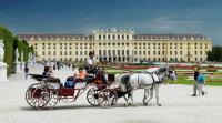 فيينا أفضل المدن للمعيشة ..  والأسوأ عربية !