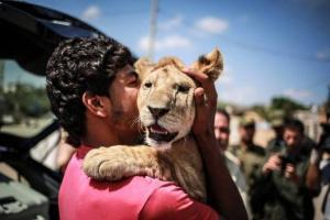 """""""لذيذ"""" من جحيم الحصار إلى الأردن ومنها إلى جنوب أفريقيا(فيديو)"""