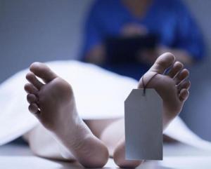 العثور على جثتين مدفونتين بأحراش صافوط في جرش