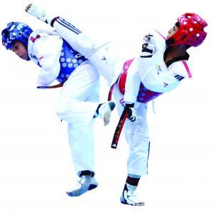 الأردن يطلب استضافة تصفيات بطولة التايكوندو لأولمبياد طوكيو 2020