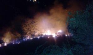 عجلون  ..  حريق يلتهم 10 دونمات (فيديو و صور)