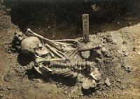 هيكل عظمي لرجل عضته سمكة قرش قبل 3000 عامًا