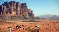 سلطة العقبة: أراضي وادي رم مسجلة باسم الخزينة ولم تتغير ملكيتها