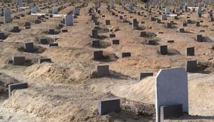 العثور على جثة طفل حديث الولادة بمقبرة قديمة في اربد