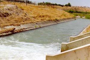 انتشال جثة لقيط من قناة الملك عبدالله