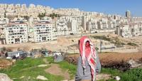 الأردن يحذر مجددا من تبعات ضم أراضي فلسطينية للاحتلال