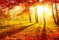 الارصاد: الاعتدال الخريفي الاثنين