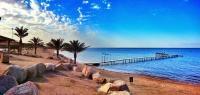 بدء إنشاء أول محمية بحرية بالأردن