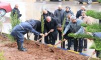 """أسرة """"عمان العربية"""" تغرس (300) شجرة بعيدها"""