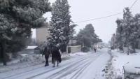 إنقاذ وتأمين 153 شخصا علقوا بالثلوج