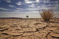 نواب يطالبون بإعلان 2021 عام جفاف