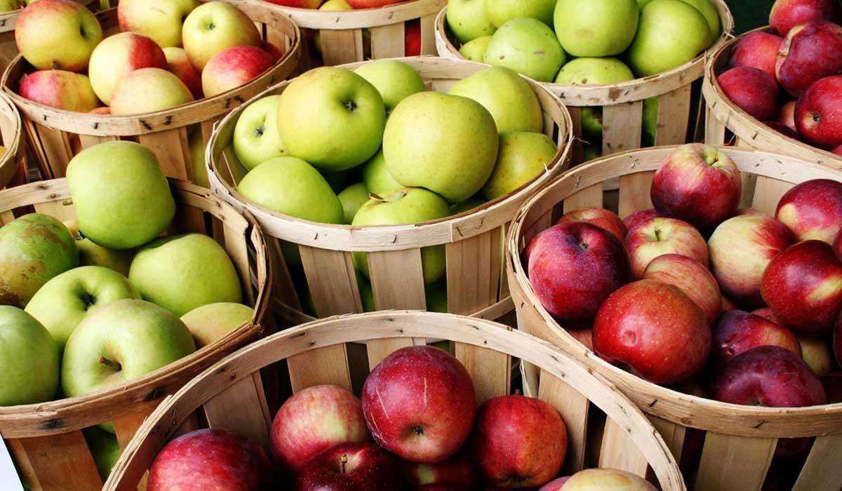 مشكلات صحية يسببها تناول التفاح بكثرة Image