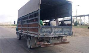 ضبط سائق نقل 39 شخصا بصندوق شاحنة (صور)